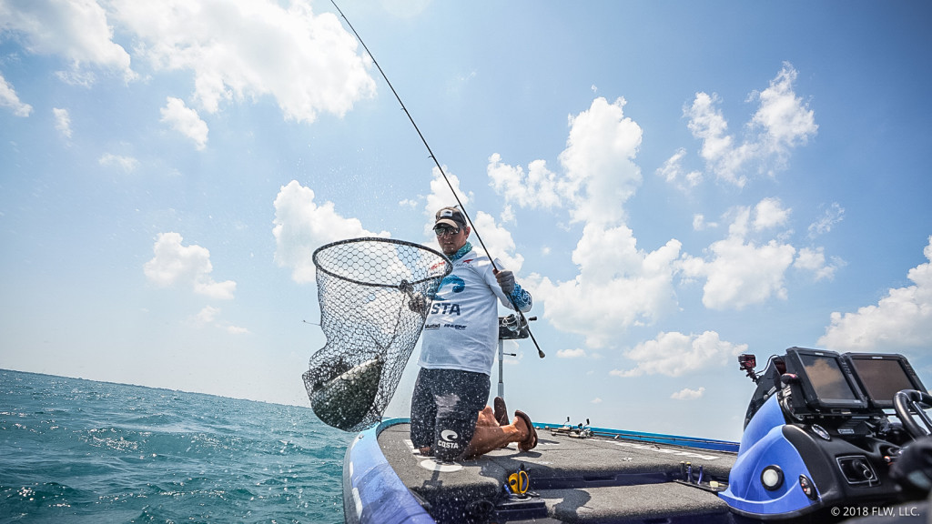 Top 10 Patterns from Lake St. Clair (2nd Place)